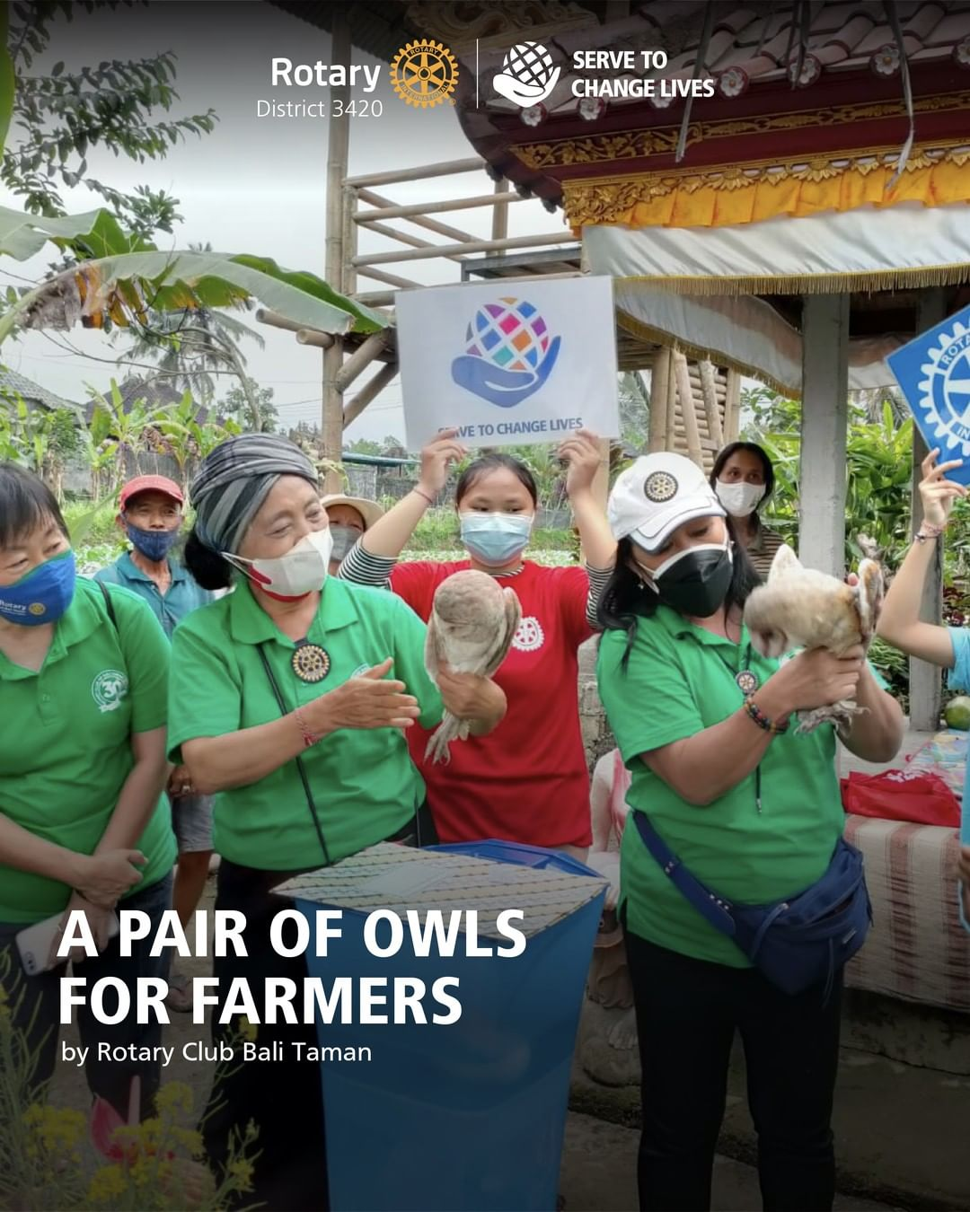 A Pair of Owls for Farmers
