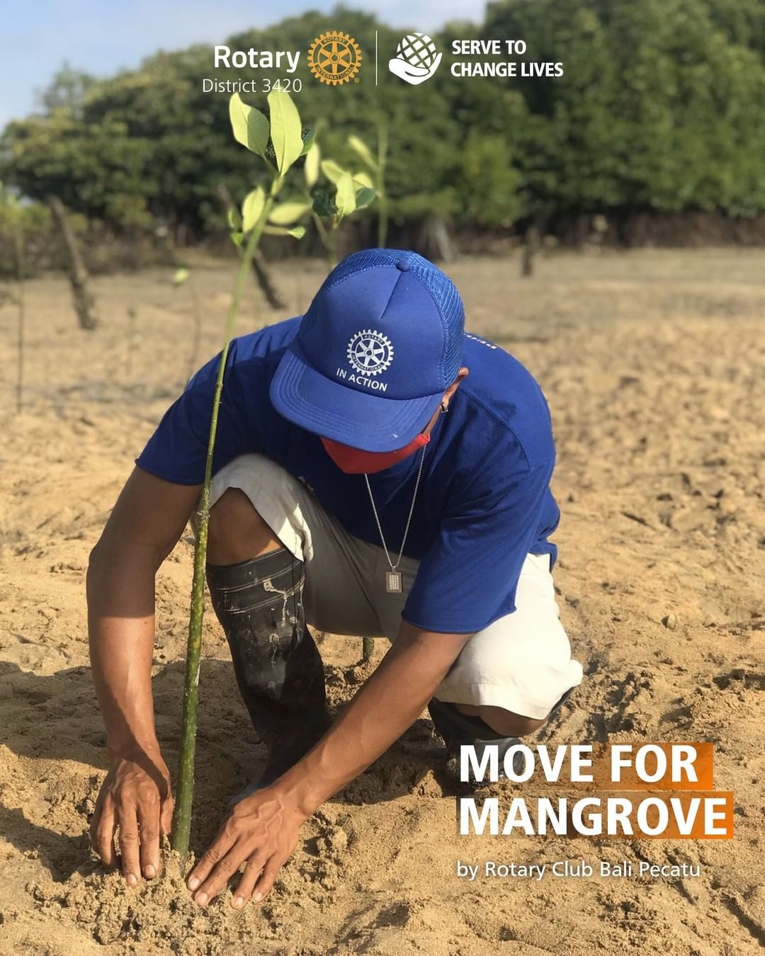 Move for Mangrove